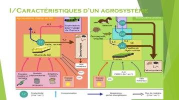 agrosystème jpg .004