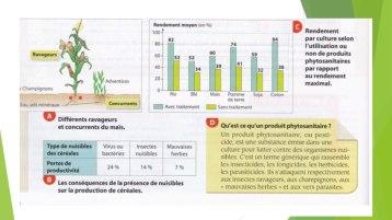 agrosystème jpg .011