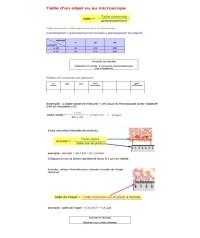 TP 4 les cellules au MO et MET_Page_2